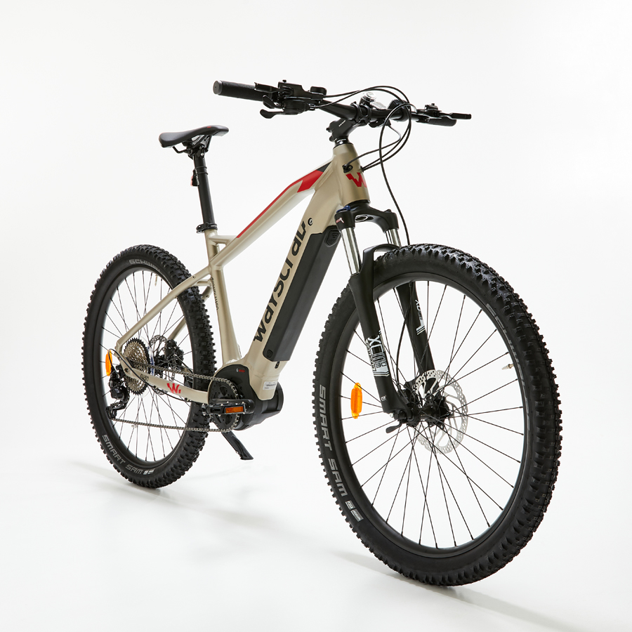 E-Bike-Anyway-E450-T53-von-Wayscral
