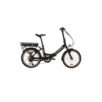 E-Bike/Pedelec-Takeaway-E100-von-Wayscral
